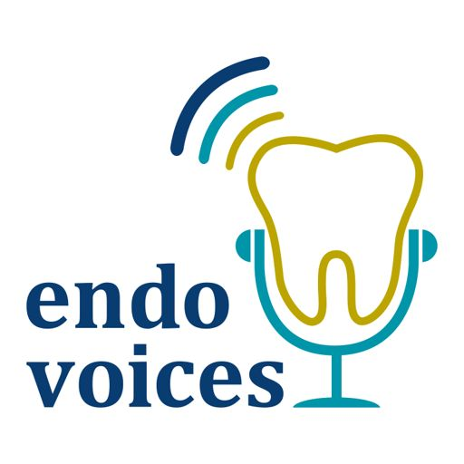 Cover art for podcast Endo Voices