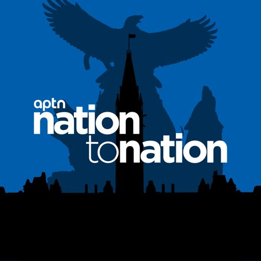 Cover art for podcast Nation To Nation