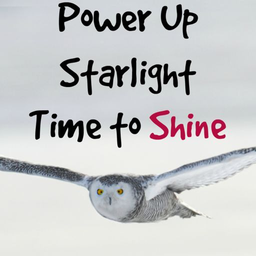 Cover art for podcast Power Up Starlight - Channeled Messages to Help You Shine
