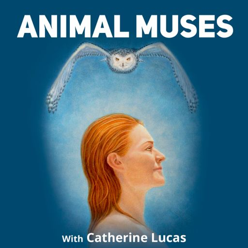 Cover art for podcast Animal Muses with Catherine Lucas