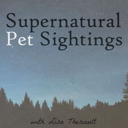 Cover art for podcast Supernatural Pet Sightings