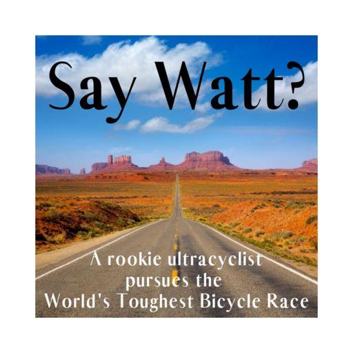 Cover art for podcast Say Watt?