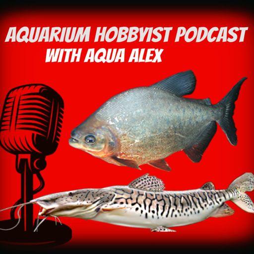 Cover art for podcast Aquarium Hobbyist Podcast