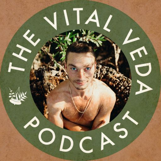 Cover art for podcast The Vital Veda Podcast: Ayurveda   Holistic Health   Cosmic and Natural Law