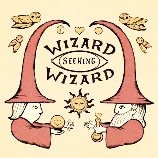 Cover art for podcast Wizard Seeking Wizard