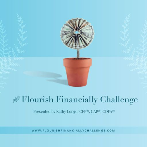 Cover art for podcast The Flourish Financially Challenge