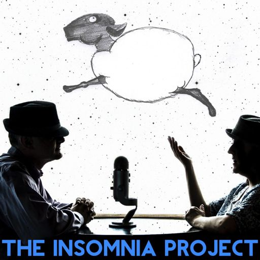 Cover art for podcast The Insomnia Project