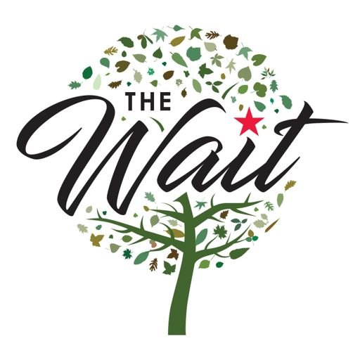 Cover art for podcast The Wait