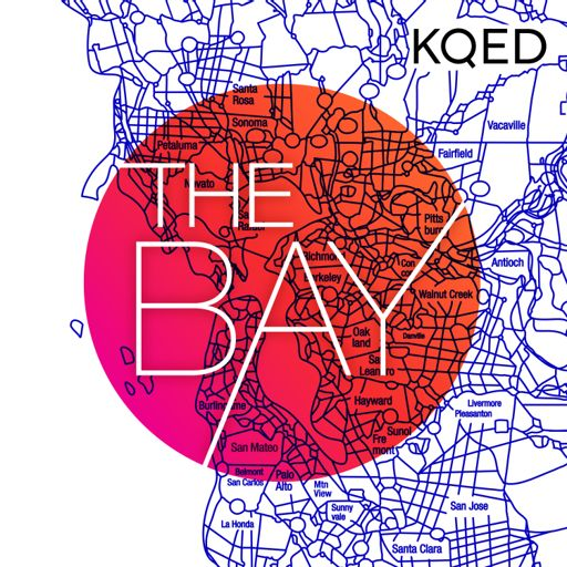 Your Identity, Your Vote from The Bay on RadioPublic
