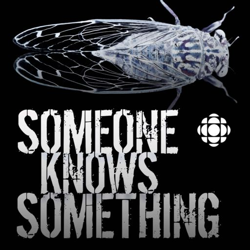 Cover art for podcast Someone Knows Something