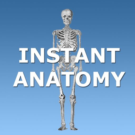 Cover art for podcast Instant Anatomy