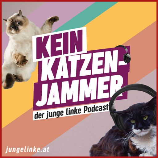 Cover art for podcast Kein Katzenjammer