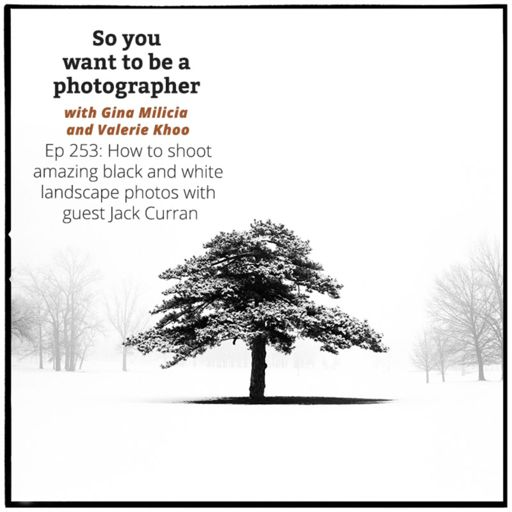 PHOTO 146: How to find your photography niche from So You