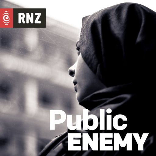 Cover art for podcast Public Enemy