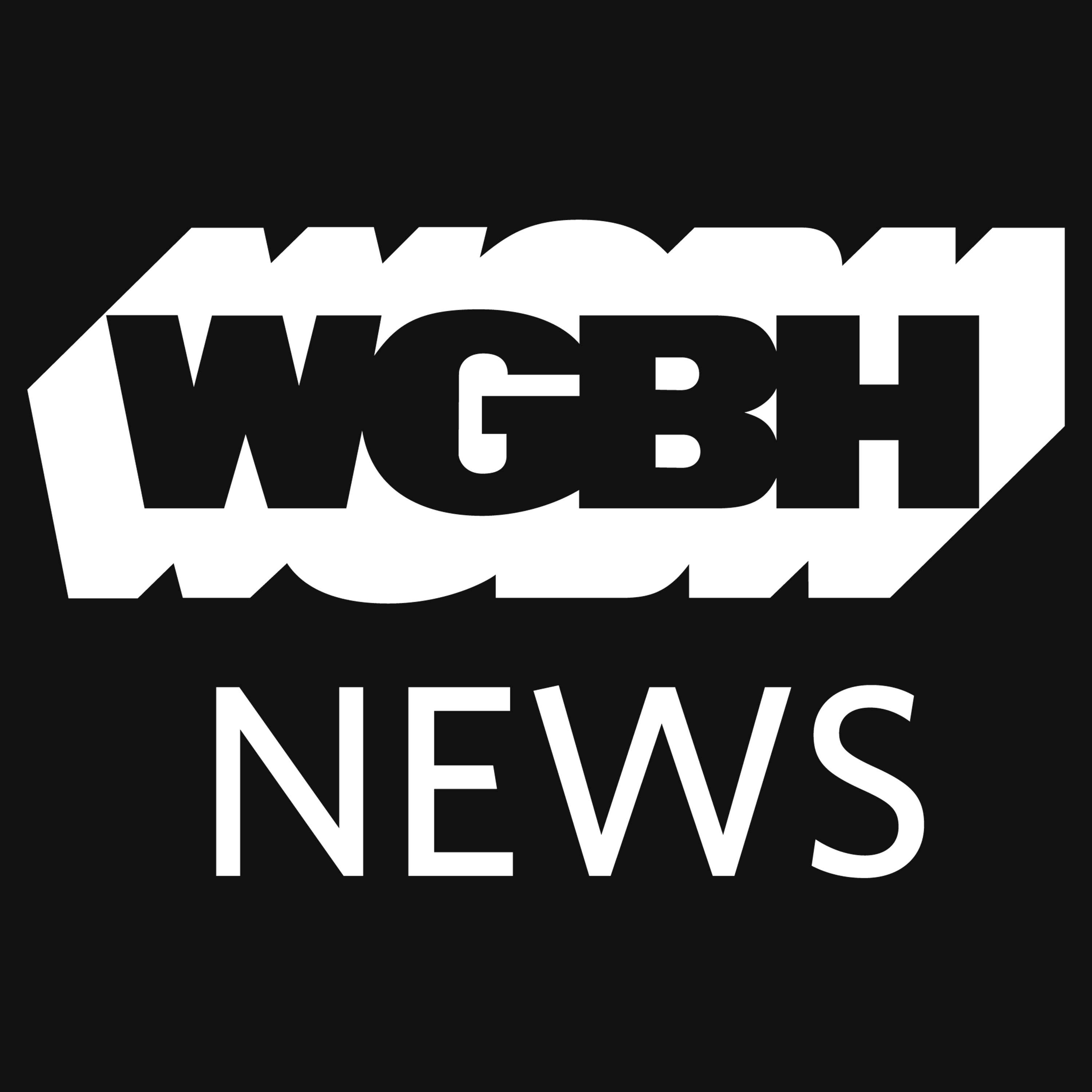 WGBH News Presents: Fire In The Valley album art
